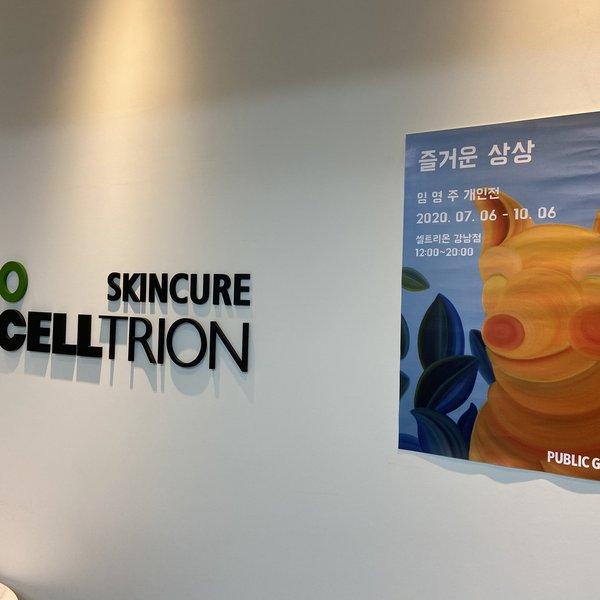 강남셀트 임영주1