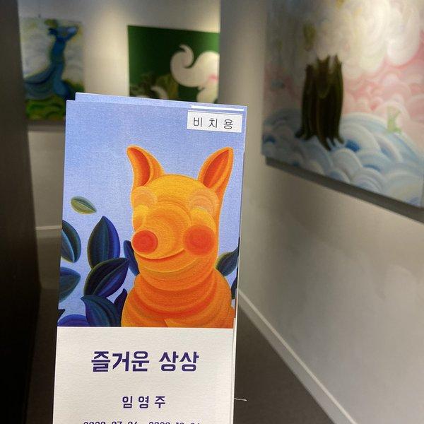 강남셀트 임영주2
